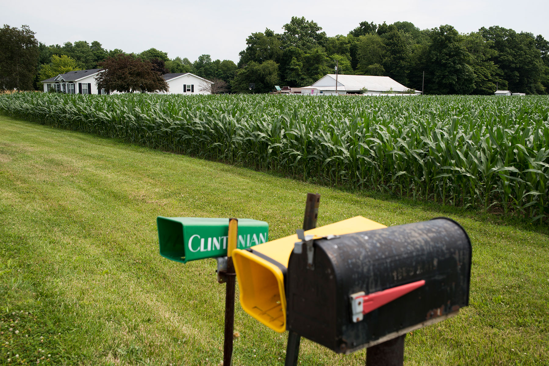 Mailboxes and a cornfield create a typical scene in Newport, Indiana. Just past the cornfield, several people are being baptized in a pastor's pool, making this a special day for the town. (Roman Knertser/News21)